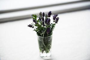 What To Expect. lavender jar